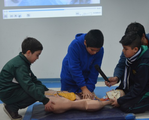 Alumnos REDUCA de taller de primeros auxilios